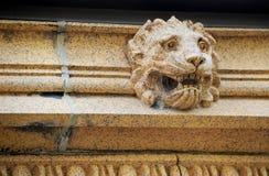 Leeuw` s Hoofd Stock Foto