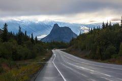Leeuw` s hoofd op het eind van de weg in Alaska stock foto's