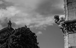 Leeuw van de kathedraal van Luca stock afbeelding