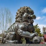 Leeuw voor tempelarchitectuur royalty-vrije stock afbeeldingen