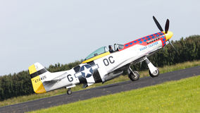 LEEUWARDEN, THE NETHERLANDS - JUNE 10: P51 Mustang displaying at Stock Image