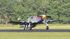 LEEUWARDEN, THE NETHERLANDS - JUNE 10: P51 Mustang displaying at Royalty Free Stock Image