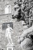 Leeuwbeeldhouwwerk en David van Michelangelo Stock Foto's