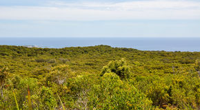Leeuwin-Naturaliste National Park: Ocean Views royalty free stock photos