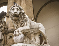 Leeuwstandbeeld bij Piazza Della Signoria, Florence Stock Foto