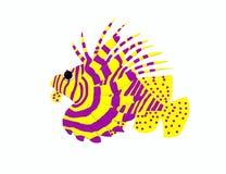 Leeuwvissen stock afbeelding