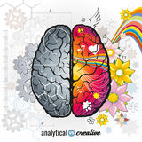 Left analytical and right creativity brain. Functions vector concept illustrations. Human intelligence, design left and right mind, intellect psychology Royalty Free Stock Images