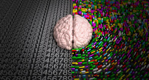 Left Brain & Right Brain. A typical brain with the left side depicting an analytical, structured and logical mind, and the right side depicting a scattered stock photo