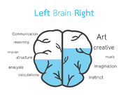 Left brain and right brain Stock Photography