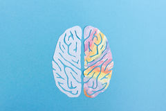 Left brain and right brain. Logic and creativity brain concept Stock Photography