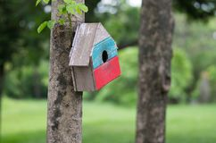 Colourful birdhouse in the green garden stock photography