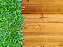 Left Green Grass on Wood Stock Image