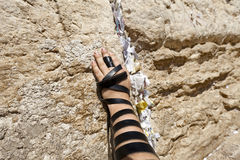 Phylacteries Wrapped Hand on the Western Wall Royalty Free Stock Image