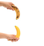 Left hands holding a fresh banana up and a over-ripe one down like mens penis as potency concept Stock Photography