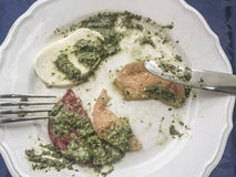 Left overs of mozzarella salad with pesto sauce Royalty Free Stock Photos