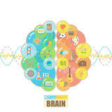 Left and right brain bubbles concept Royalty Free Stock Image