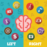 Left and right brain Royalty Free Stock Photo