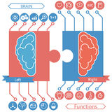 Left and right brain functions concept Royalty Free Stock Image