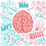 Left and right brain functions Stock Photo