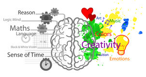 Left and right brain. This image illustrates the use of brain hemispheres. Right: emotions, intuitions, creativity and colorful vision. Left: logic, reason stock illustration