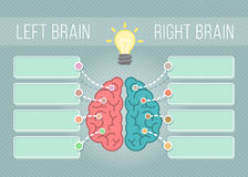 Left and Right Brain Infographics Stock Photos