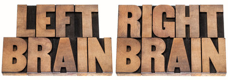 Left and right brain. Left brain and right brain - psychology concept - isolated text in vintage letterpress wood type printing blocks stock photos
