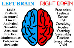 Left right brain. The supposed difference between left brain and right brain vector illustration