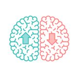 Left and Right Brain, Up and Down concept outline stroke flat design with Arrow symbol illustration. Isolated on white background with copy space, vector eps 10 Stock Images