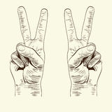Left and right hands with victory sign Royalty Free Stock Photo