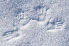 Left and right human prints in the snow. Stock Photography