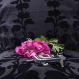 Left at the seat (after a romantic dinner). Pink roses, mobile phone, car keys left at the seat (after a romantic dinner stock image