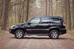 Left side of the black SUV in forest.  Stock Photos