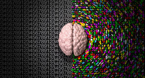Left Side Right Side Brains Royalty Free Stock Image