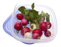 Leftover Easter Radishes Royalty Free Stock Images