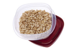 Leftover Pine Nuts Royalty Free Stock Photo