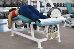 Leg Curl. A female lies on a hamstring curl machine in a gym royalty free stock photos