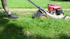 Leg cut grass stone path stock video