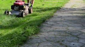 Leg cut grass stone path stock video footage