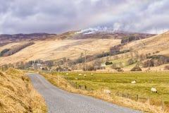 Leg Heather Burning Scottish Hills-kant vast royalty-vrije stock afbeelding