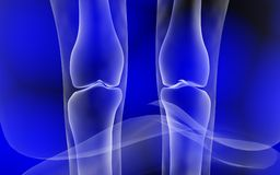Leg joint Royalty Free Stock Photo
