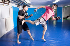 Leg kick in the belly during martial art training Royalty Free Stock Image