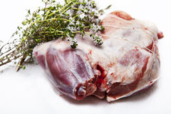 Leg of lamb Stock Image