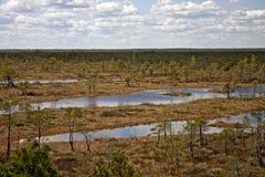 Leg landschap vast Royalty-vrije Stock Foto's