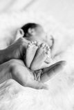 Leg of the newborn child in caring hands Stock Photos