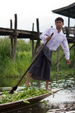 Leg-rowing fisherman at Inle Lake, Myanmar Stock Photography