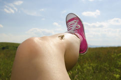 Leg with smooth skin Royalty Free Stock Photo