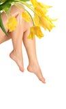 Leg and tulip royalty free stock photos