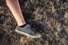 The leg of a young woman in the grass Royalty Free Stock Photo