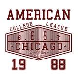 Lega americana dell'istituto universitario di progettazione Immagine Stock Libera da Diritti