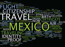 Legal Air Travel To Mexico Fly Now Or Suffer Later Text Background  Word Cloud Concept Stock Photo